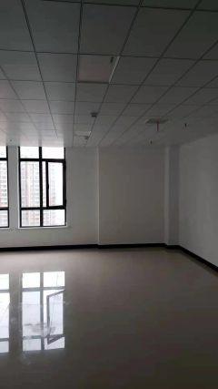1室1厅1卫1300元/月62m²精装修出租