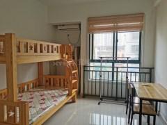 信高+50分 宝峰华府 精装住宅公寓 1室 采光无遮挡可按揭